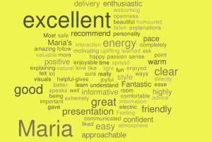 WordItOut-word-cloud-676562 (2)
